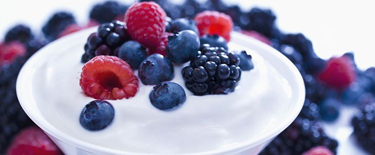 Dolci e Torte allo Yogurt