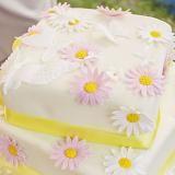 Come fare una torta a due piani